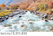 Горная река. Стоковое фото, фотограф Вадим Землянский / Фотобанк Лори