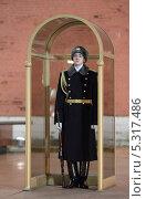 Купить «Почетный караул у Кремлевской стены», эксклюзивное фото № 5317486, снято 23 ноября 2013 г. (c) Дмитрий Неумоин / Фотобанк Лори