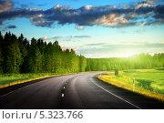 Купить «Асфальтированная дорога в лесу», фото № 5323766, снято 19 июня 2012 г. (c) Iakov Kalinin / Фотобанк Лори