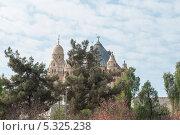 Купить «Вид на храм сквозь деревья. Иерусалим. Израиль», фото № 5325238, снято 12 ноября 2013 г. (c) Александр Овчинников / Фотобанк Лори