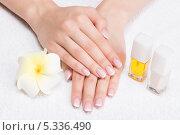 Купить «Красивые женские руки с французским маникюром и лак для ногтей», фото № 5336490, снято 18 ноября 2013 г. (c) Валуа Виталий / Фотобанк Лори