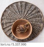 Купить «Луковица гиппеаструма в деревянной чашке на плетенном круге», фото № 5337990, снято 3 декабря 2013 г. (c) Олеся Сарычева / Фотобанк Лори