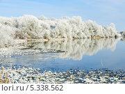 Купить «Замерзшие деревья вдоль реки, зимний пейзаж», фото № 5338562, снято 7 декабря 2010 г. (c) Татьяна Кахилл / Фотобанк Лори