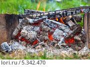 Дрова горят в костре. Стоковое фото, фотограф FotograFF / Фотобанк Лори