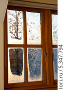 Вид из окна на зимний вечерний пейзаж. Стоковое фото, фотограф Татьяна Кахилл / Фотобанк Лори