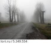Дорога в никуда. Стоковое фото, фотограф Chutniza / Фотобанк Лори