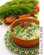 Купить «Токмач по-татарски или суп-лапша домашняя», фото № 5350490, снято 6 декабря 2013 г. (c) Гульсинэ / Фотобанк Лори