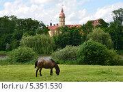 Купить «Беларусь, замок Несвиж», фото № 5351530, снято 11 июня 2012 г. (c) Овчинникова Ирина / Фотобанк Лори