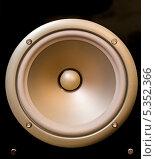 Купить «Электродинамический громкоговоритель (динамик)», фото № 5352366, снято 7 декабря 2013 г. (c) Александр Степанов / Фотобанк Лори
