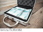Купить «Аккуратно сложенные российские рубли в стальном кейсе», фото № 5353582, снято 23 ноября 2013 г. (c) Кекяляйнен Андрей / Фотобанк Лори