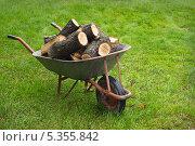 Купить «Дрова на тележке», фото № 5355842, снято 27 октября 2013 г. (c) Александр Романов / Фотобанк Лори
