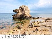 Берег Азовского моря. Стоковое фото, фотограф Лысенко Владимир / Фотобанк Лори