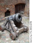 Купить «Мортира  XVIII века на деревянном лафете», фото № 5393678, снято 3 мая 2013 г. (c) Ирина Борсученко / Фотобанк Лори