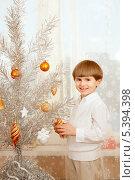 Купить «Радостный мальчик наряжает серебристую  елку», фото № 5394398, снято 15 декабря 2013 г. (c) Юлия Кузнецова / Фотобанк Лори