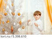 Пятилетний мальчик наряжает новогоднюю елку у окна, фото № 5398610, снято 15 декабря 2013 г. (c) Юлия Кузнецова / Фотобанк Лори