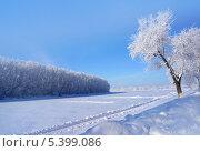Купить «Зимний пейзаж», фото № 5399086, снято 6 февраля 2009 г. (c) ElenArt / Фотобанк Лори