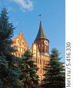Купить «Калининград-Кёнигсберг. Кафедральный собор», эксклюзивное фото № 5416330, снято 30 октября 2013 г. (c) Svet / Фотобанк Лори