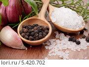Купить «Черный перец и крупная соль на деревянном столе», фото № 5420702, снято 5 июля 2011 г. (c) Natalja Stotika / Фотобанк Лори