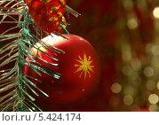 Красный ёлочный шар со звездой. Стоковое фото, фотограф Вячеслав Сапрыкин / Фотобанк Лори