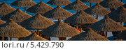 Зонтики. Стоковое фото, фотограф Владимир Вольвач / Фотобанк Лори