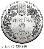 Купить «Монета Украины 2 гривны 2000 года. Обрамление природной тематики, герб», иллюстрация № 5430286 (c) Евгений Мухортов / Фотобанк Лори