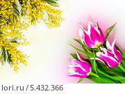 Купить «Фон для открытки 8 Марта», фото № 5432366, снято 20 сентября 2019 г. (c) Светлана Кузнецова / Фотобанк Лори