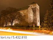 Купить «Ночной вид на Замок Турку, Финляндия», эксклюзивное фото № 5432810, снято 22 ноября 2013 г. (c) Литвяк Игорь / Фотобанк Лори
