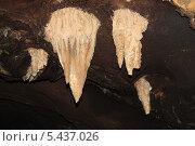 В пещере, сталактиты. Стоковое фото, фотограф Дмитрий Казанцев / Фотобанк Лори