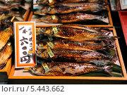 Копченая рыба с ценником на прилавке рынка. Япония. Стоковое фото, фотограф Александра Прохорова / Фотобанк Лори