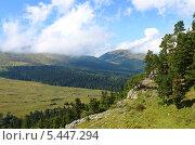 Лагонакское нагорье, Кавказский заповедник, фото № 5447294, снято 11 сентября 2013 г. (c) Анна Мартынова / Фотобанк Лори