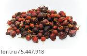 Купить «Сушеный шиповник», фото № 5447918, снято 19 августа 2018 г. (c) Иван Федоренко / Фотобанк Лори