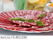Купить «Тарелка с нарезанной колбасой», эксклюзивное фото № 5453030, снято 31 декабря 2013 г. (c) Игорь Низов / Фотобанк Лори