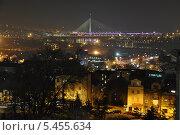 Ночной Белград. Вид на центр города и вантовый мост. Сербия (2013 год). Редакционное фото, фотограф Bala-Kate / Фотобанк Лори