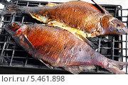 Купить «Рыба запеченная на решетке», фото № 5461898, снято 3 сентября 2011 г. (c) Несинов Олег / Фотобанк Лори
