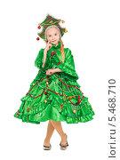 Купить «Девочка в костюме новогодней елки», фото № 5468710, снято 8 ноября 2013 г. (c) Сергей Сухоруков / Фотобанк Лори