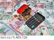 Купить «Деньги, кошелёк и калькулятор», эксклюзивное фото № 5469126, снято 9 января 2014 г. (c) Юрий Морозов / Фотобанк Лори