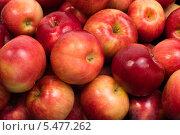 Красные яблоки. Стоковое фото, фотограф Фесенко Сергей / Фотобанк Лори