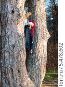 Мальчик в новогодней шапке стоит среди стволов старой сосны. Стоковое фото, фотограф Игорь Низов / Фотобанк Лори