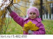Девочка с букетом осенних листьев. Стоковое фото, фотограф Евгений Степанов / Фотобанк Лори