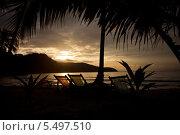 Восход солнца на морском пляже с шезлонгами под пальмами. Стоковое фото, фотограф Александр Жильцов / Фотобанк Лори
