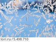 Купить «Изморозь, фон», фото № 5498710, снято 19 ноября 2017 г. (c) Tamara Sushko / Фотобанк Лори
