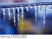 Купить «Прозрачные сосульки», фото № 5512202, снято 21 января 2014 г. (c) Типляшина Евгения / Фотобанк Лори