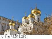 Купить «Золотые купола Благовещенского собора в Московском Кремле осенним солнечным днем», эксклюзивное фото № 5518286, снято 29 октября 2013 г. (c) lana1501 / Фотобанк Лори