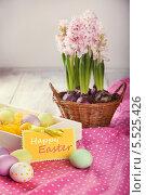 Красочный натюрморт с разноцветными пасхальными яйцами и цветами гиацинтами. Стоковое фото, фотограф Елена Ефимова / Фотобанк Лори