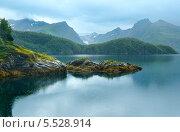 Купить «Озеро (фьорд) и Ледник Свартисен (Норвегия)», фото № 5528914, снято 13 июля 2013 г. (c) Юрий Брыкайло / Фотобанк Лори