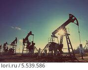 Купить «Нефтяные насосы», фото № 5539586, снято 19 октября 2018 г. (c) Михаил Коханчиков / Фотобанк Лори