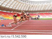 Купить «Международные спортивные соревнования в Лужниках 11 июня 2012 года, Москва, Россия», фото № 5542590, снято 11 июня 2012 г. (c) Losevsky Pavel / Фотобанк Лори