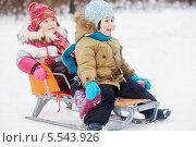 Купить «Маленькие улыбающиеся дети сидят на санках в зимнем парке», фото № 5543926, снято 10 февраля 2013 г. (c) Losevsky Pavel / Фотобанк Лори