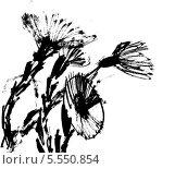 Мать-и-мачеха. Стоковая иллюстрация, иллюстратор Лена Березина / Фотобанк Лори