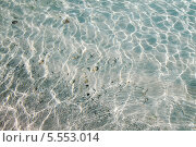 Дно под голубой водой. Стоковое фото, фотограф Мария Молоткова / Фотобанк Лори